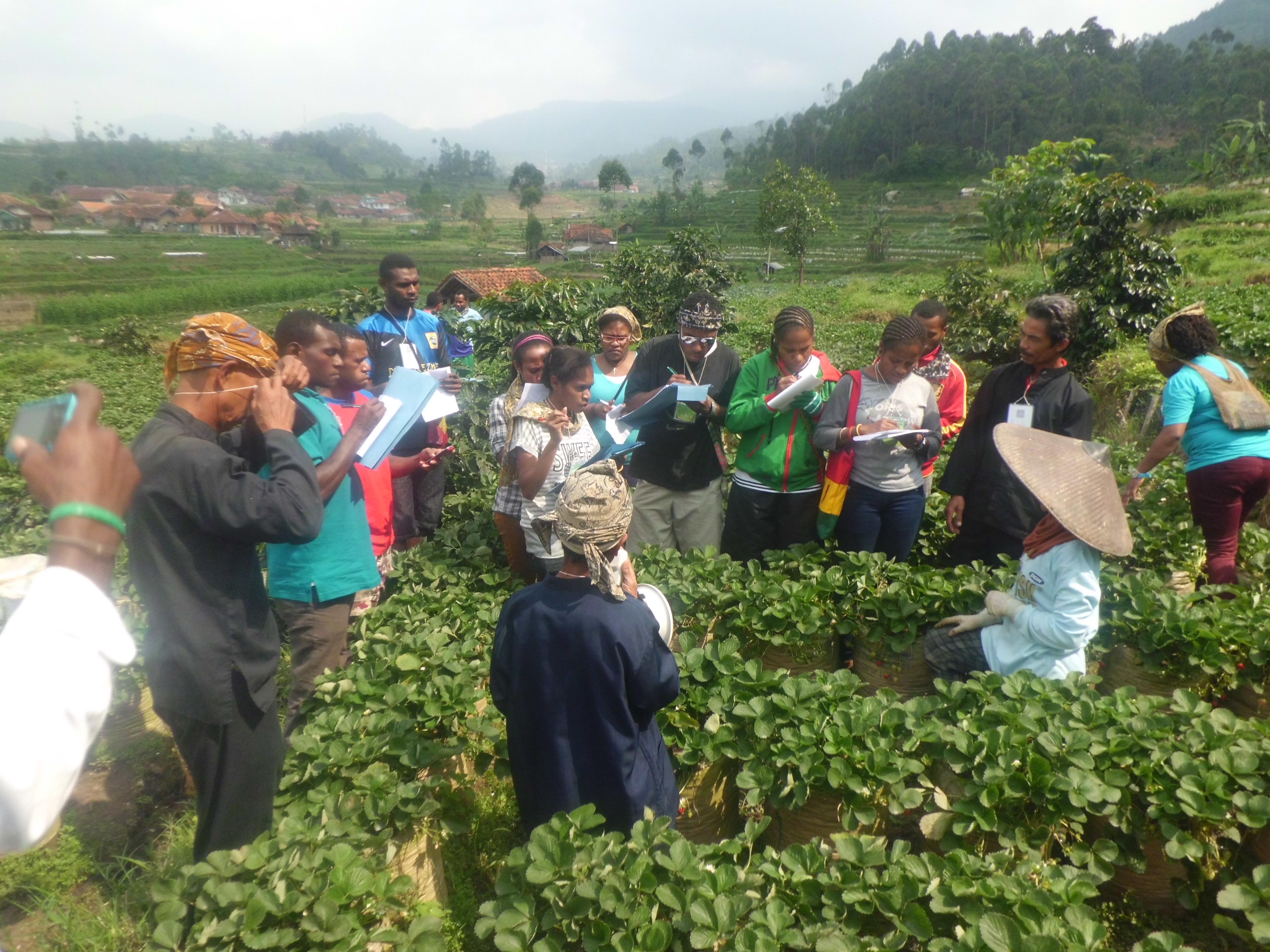 Desa Wisata Lebakmuncang Agroedukasi Orientasi Budaya